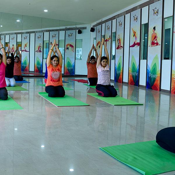 yog 3
